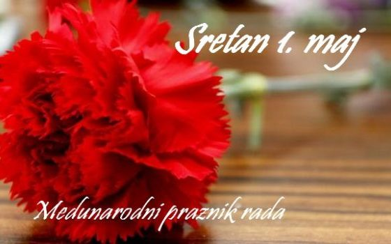 praznik_rada-karanfil-7-570x350